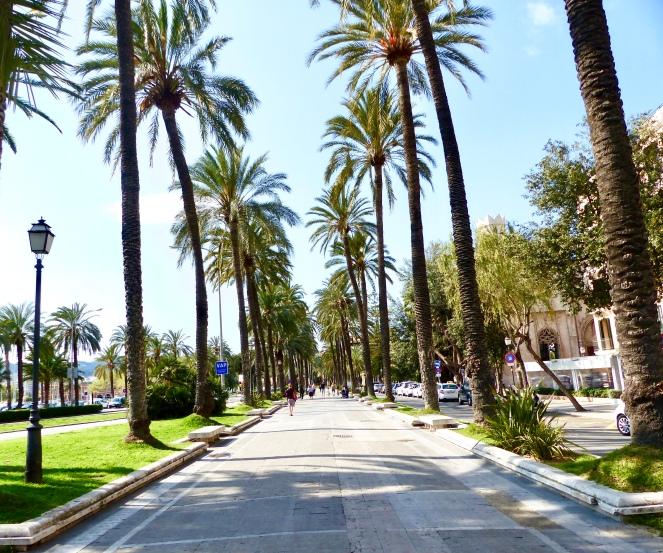 avenue-palma